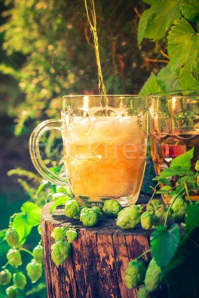 Foto stock: Cerveja · salto · vida · ouro · bubbles