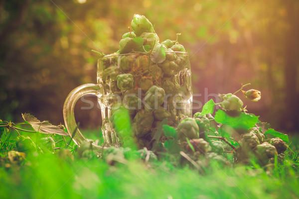 Vidro caneca completo verde salto cerveja Foto stock © fotoaloja