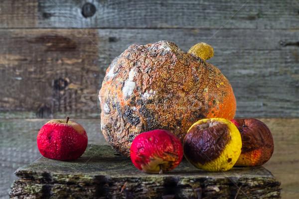 Rot vruchten oude hout natuur Stockfoto © fotoaloja