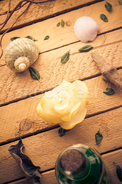 Scented candle sea shells wooden background Stock photo © fotoaloja