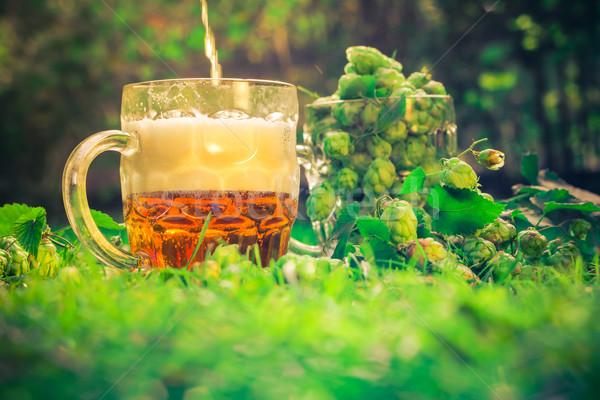 Quartilho cerveja cone folha bar beber Foto stock © fotoaloja