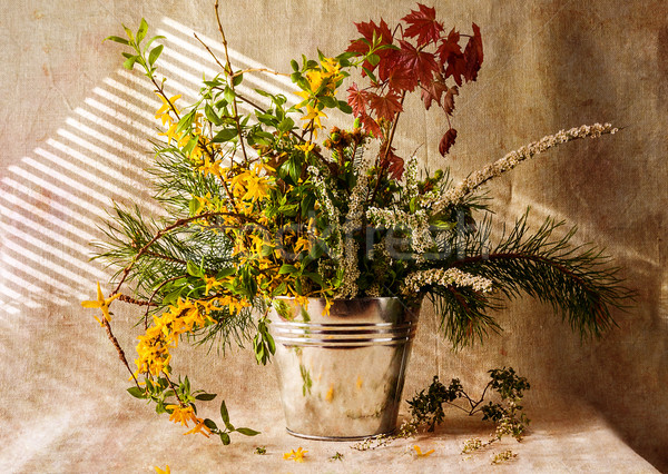 Still life cadeaux forêt fleur fleurs Photo stock © fotoaloja