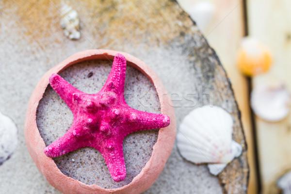 Mare conchiglie sabbia bordo acqua pesce Foto d'archivio © fotoaloja
