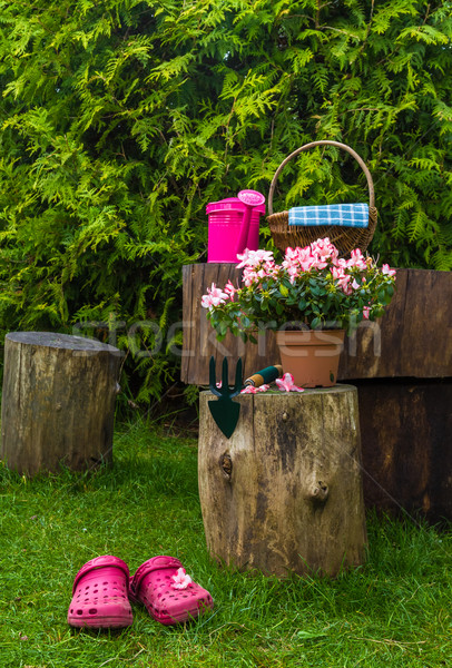 Stock photo: Spring garden tools utensils gardening