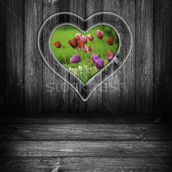 Background heart window wooden panel flower tulips grey Stock photo © fotoaloja