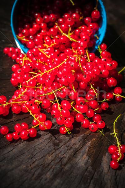 Piros ribiszke gyümölcs vödör nyár áramló Stock fotó © fotoaloja