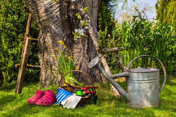 Zdjęcia stock: Narzędzia · wyposażenie · pracy · wiosną · ogród · trawy