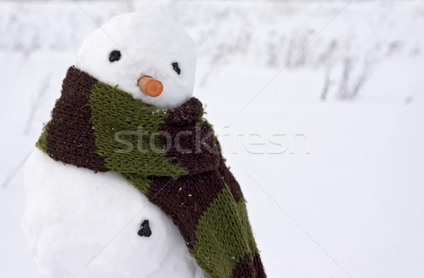 Pupazzo di neve immagine creativo faccia uomo neve Foto d'archivio © fotoaloja