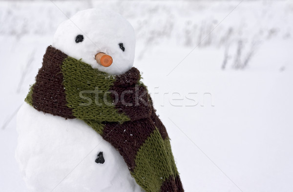 Bonhomme de neige image Creative visage homme neige Photo stock © fotoaloja