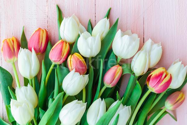 Arte abstrato primavera tulipas projeto Foto stock © fotoaloja
