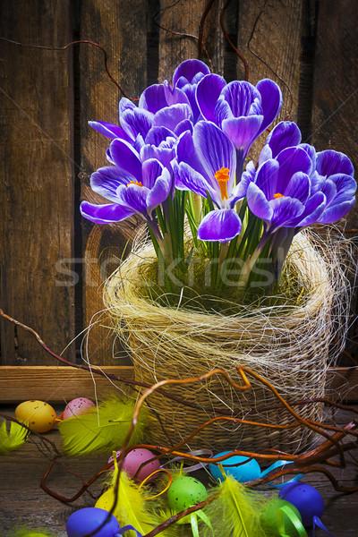 Művészet húsvéti tojás kosár fából készült kártya kikerics Stock fotó © fotoaloja