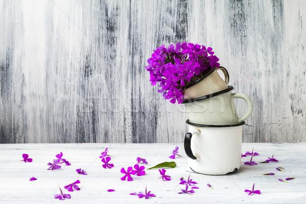 art still life flower gladiolus wooden vintage Stock photo © fotoaloja