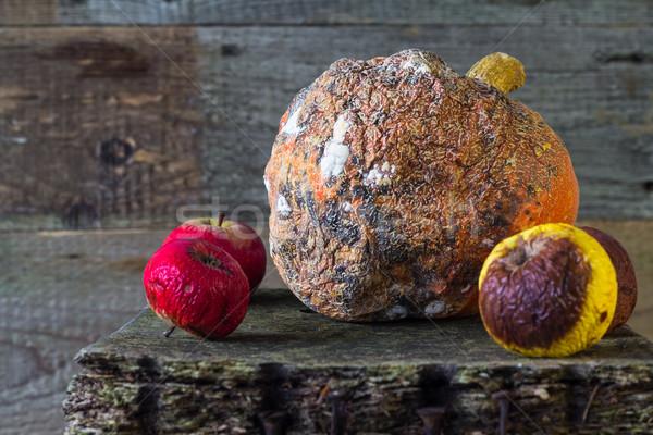 Rohadt gyümölcs fa deszka öreg fa természet Stock fotó © fotoaloja