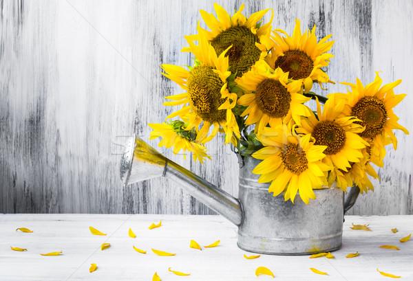 Natürmort buket ayçiçeği sulama çiçekler doğa Stok fotoğraf © fotoaloja
