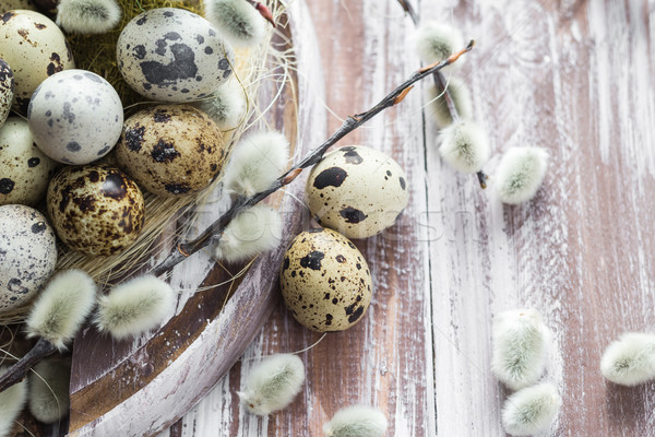 Easter background quail eggs catkins wooden table Stock photo © fotoaloja