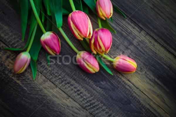 Art résumé printemps tulipes bois design Photo stock © fotoaloja