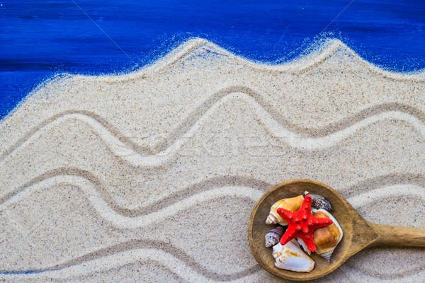 Kagylók színes kanál tengerparti homok tengerpart víz Stock fotó © fotoaloja