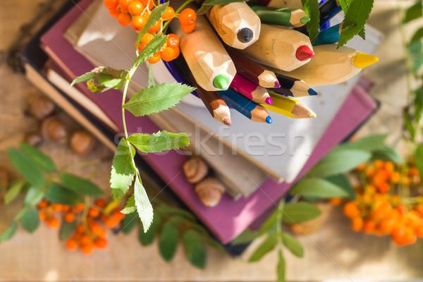 Potloden boeken Maakt een reservekopie school terug naar school gekleurd Stockfoto © fotoaloja