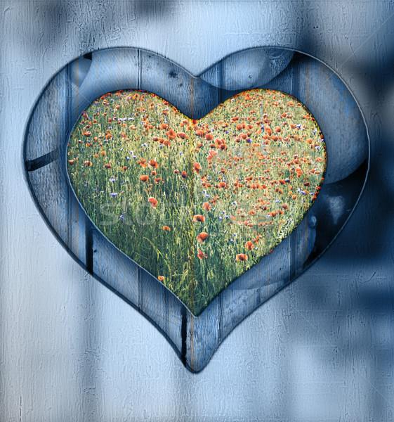 Heart frame border window wooden meadow Stock photo © fotoaloja
