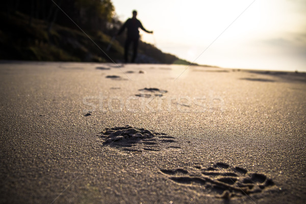 Nordic walking sport run walk motion blur outdoor track trace sa Stock photo © fotoaloja
