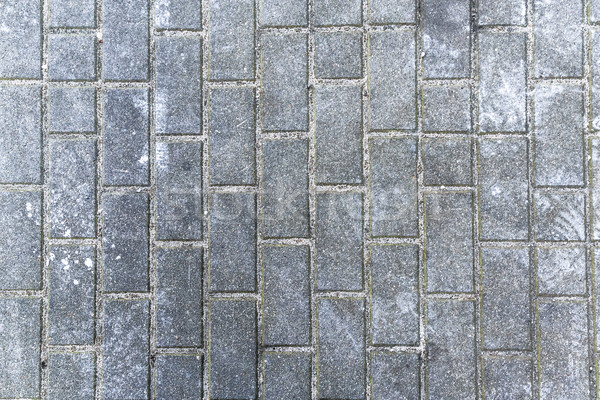 gray rectangular paving city texture Stock photo © fotoaloja