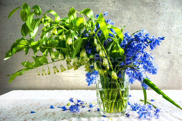 Still life bouquet polygonatum blue tones Stock photo © fotoaloja