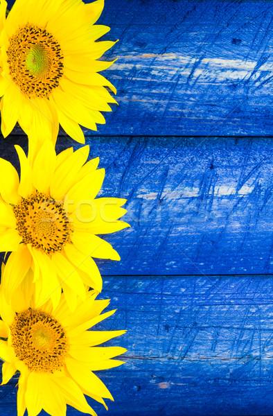 黄色 ひまわり 描いた フェンス 自然 デザイン ストックフォト © fotoaloja