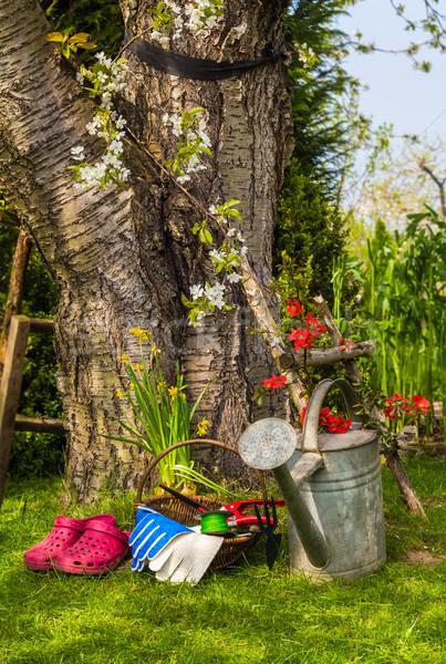 Ferramentas equipamento trabalho primavera jardim grama Foto stock © fotoaloja