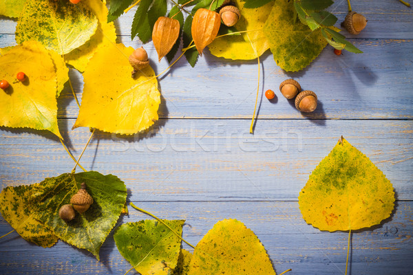 Fruits bleu table nature fond Photo stock © fotoaloja