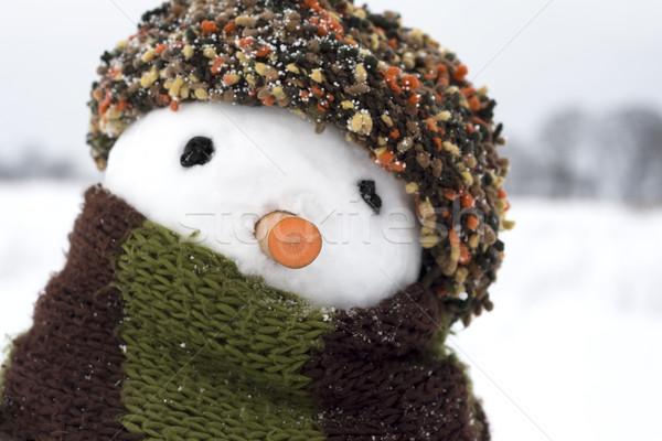 Snowman obraz twórczej twarz człowiek śniegu Zdjęcia stock © fotoaloja