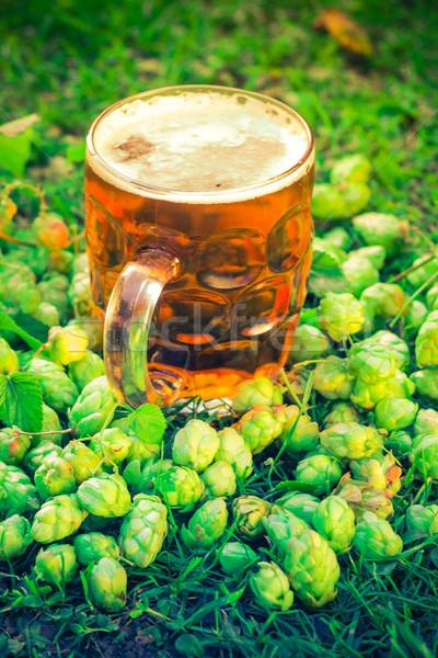 Quartilho frio cerveja salto beber vida Foto stock © fotoaloja