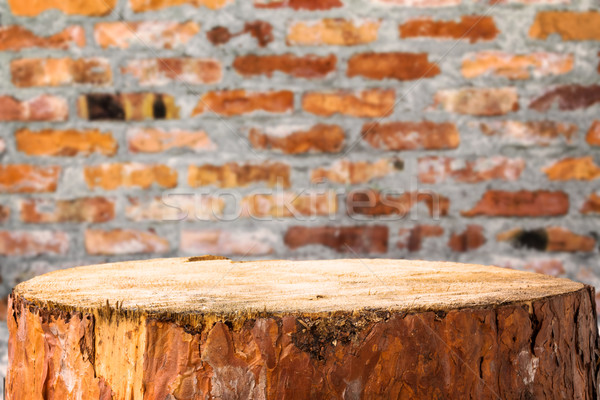 Pine stump background brick wall Stock photo © fotoaloja