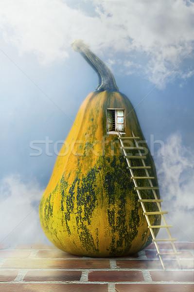 Fairytale pumpkin house ladder window Stock photo © fotoaloja