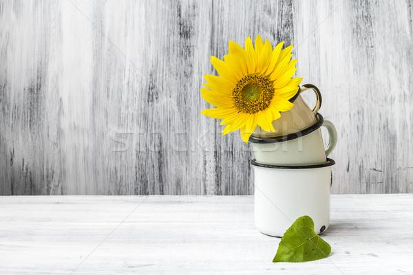 art still life flower plant floral wooden vintage Stock photo © fotoaloja