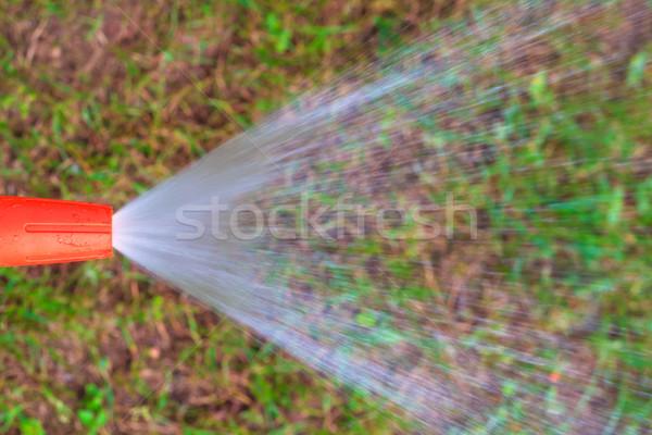 stream water garden hose Stock photo © fotoaloja