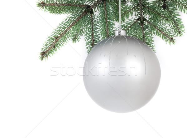 isolated christmass glass ball on tree Stock photo © fotoaloja