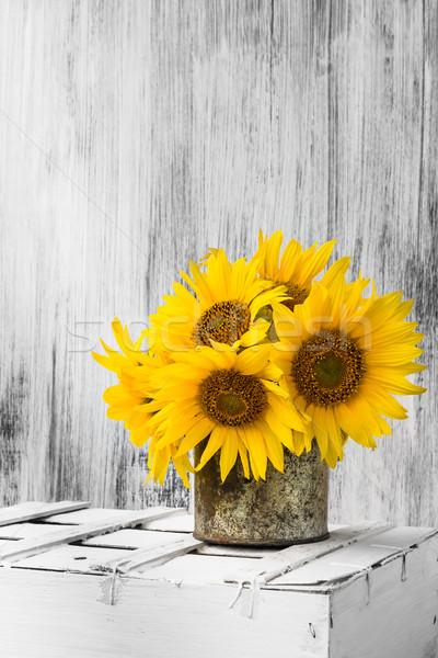 background still life flower sunflower wooden white vintage Stock photo © fotoaloja