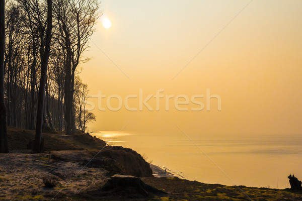 Costa mar báltico tarde tarde primavera mar Foto stock © fotoaloja