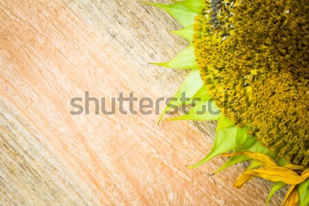 Background flower sunflower seeds wooden countertop Stock photo © fotoaloja