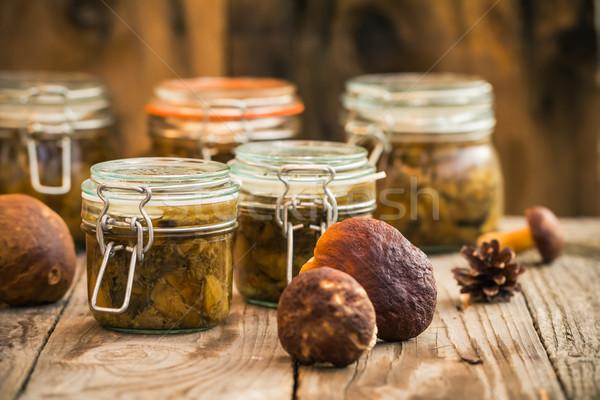 Herbst Ernte Wald Vorbereitung Pilze Anlage Stock foto © fotoaloja