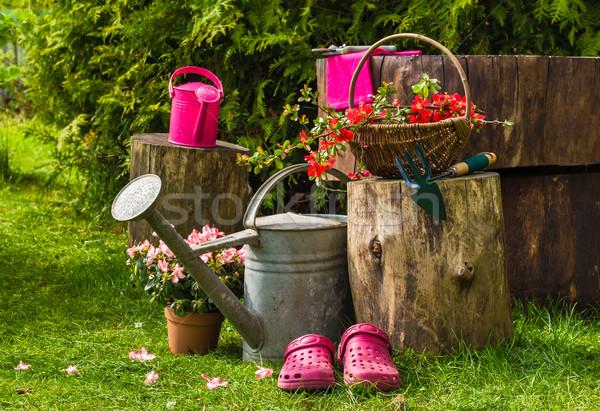 Stock fotó: Tavasz · kert · szerszámok · kellékek · kertészkedés · szükség