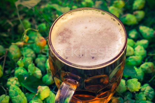pint cold beer background hop cones Stock photo © fotoaloja