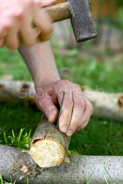 hammering nail Stock photo © fotoaloja