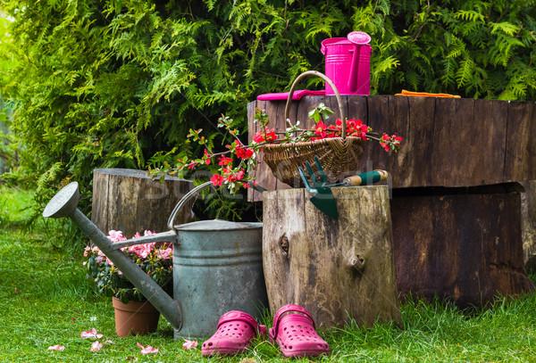 Foto d'archivio: Primavera · giardino · strumenti · giardinaggio · bisogno