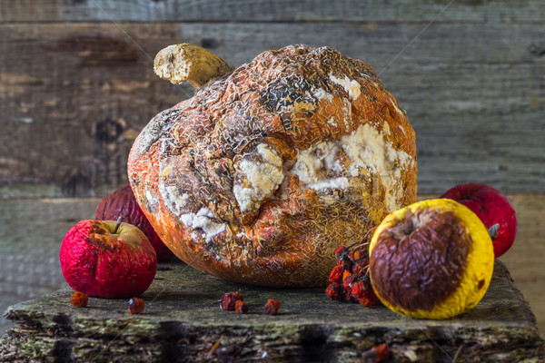 rotten fruit wooden board Stock photo © fotoaloja