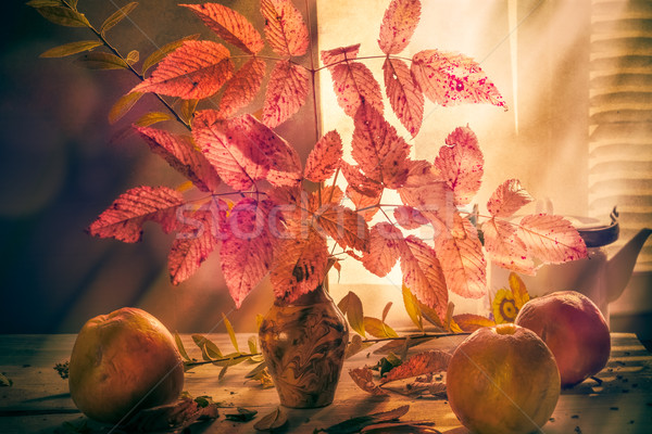 Fall Autumn autumnal bouquet Still Life apples sprigs Stock photo © fotoaloja