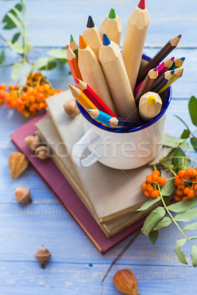 Matite libri indietro scuola autunno frutta Foto d'archivio © fotoaloja
