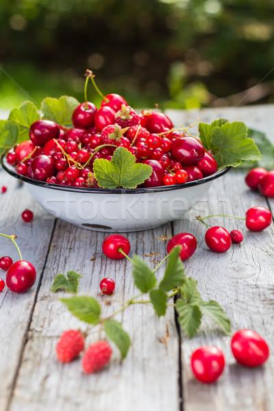 Ciotola completo frutti legno giardino Foto d'archivio © fotoaloja