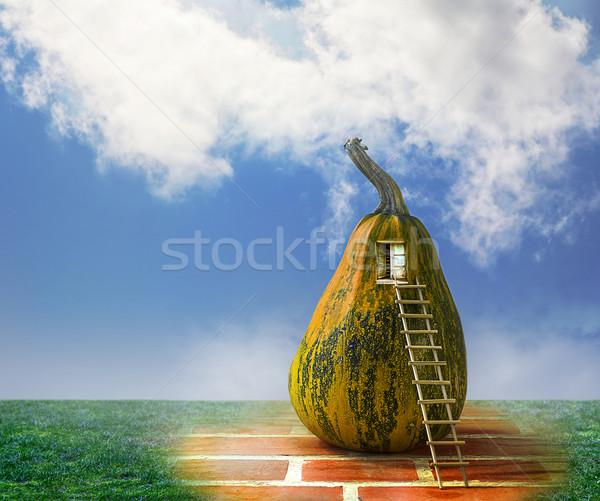 Cuento de hadas calabaza casa escalera ventana casa Foto stock © fotoaloja
