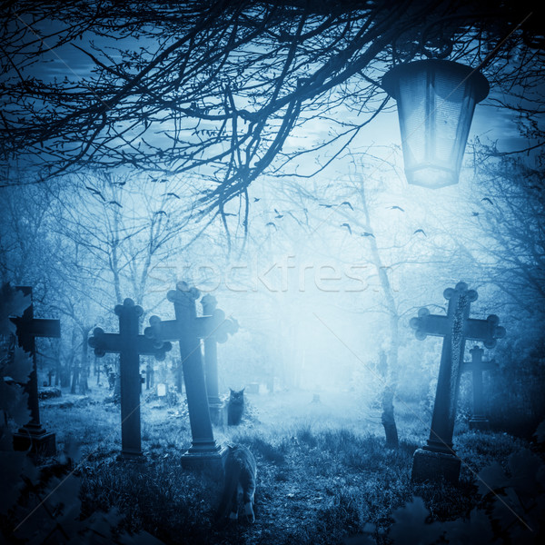 Halloween illustration night cemetery Old graves cats lanterns Stock photo © fotoaloja